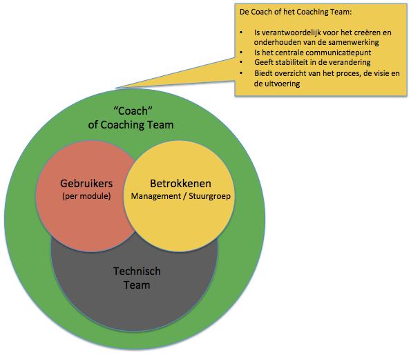 rol van de consultant