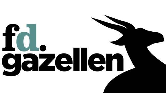 fd gazellen awards 2013