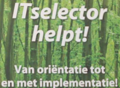 it selector onafhankelijk adviseur business software