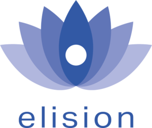 Elision logo ERP Leverancier